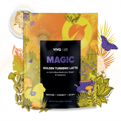 Vivo Magic Golden Turmeric Latte 120g