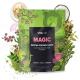 Magic Matcha Coconut Latte